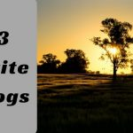 My 3 Favorite RV blogs.