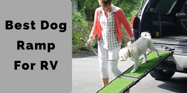 Best Dog Ramp For RV.