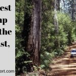 Top 10 Best RV Camp Spots in the Southeast, USA.