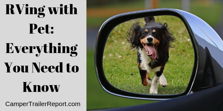 RVing with Pet. Everything You Need to Know